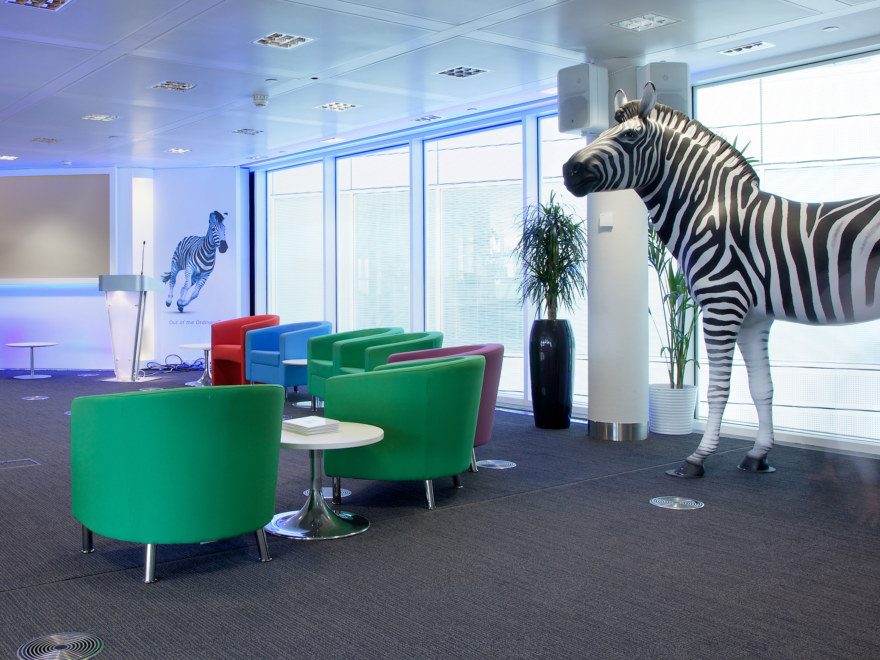 Quirky office fit out